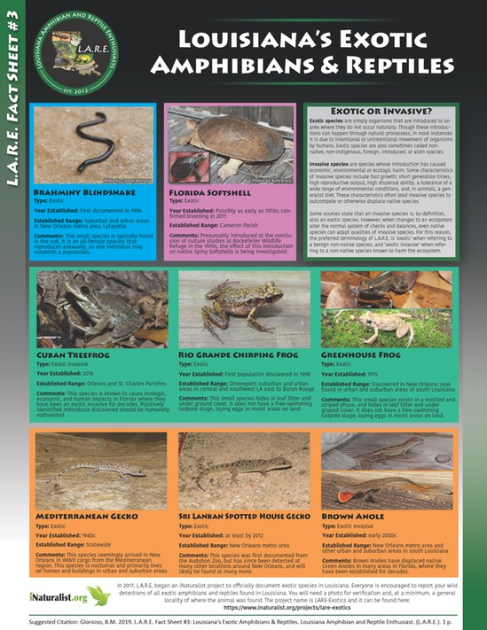 LARE Fact Sheet 3 - Exotic Herps